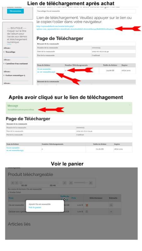 lien-de-telechargement.jpg
